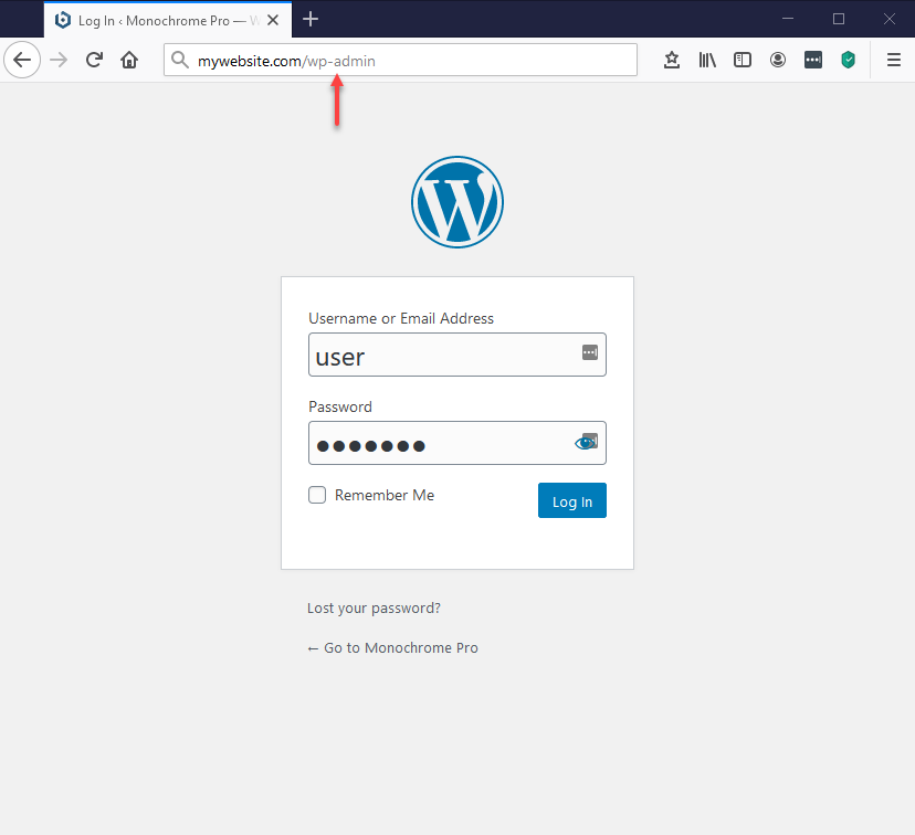 Log in to WordPress.